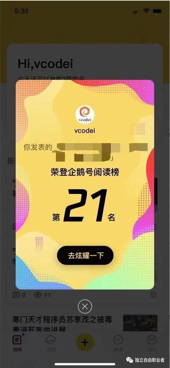 vcodei 程序员 2020年独立自由职业者赚钱汇总-独立自由职业者